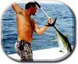 Fish Hunter Fishing Charters
