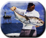 Lucky13 Sportfishing